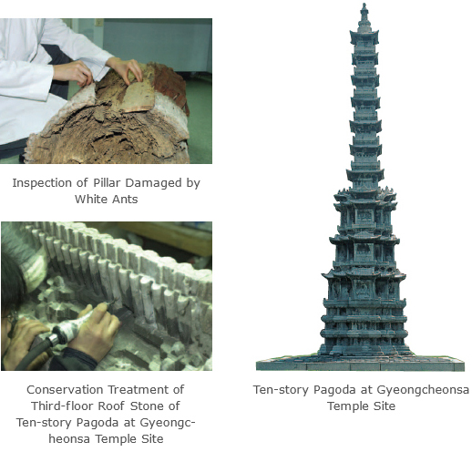 Inspection of Pillar Damaged by White Ants / Conservation Treatment of Third-floor Roof Stone of Ten-story Pagoda at Gyeongcheonsa Temple Site