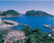 Scenic Site