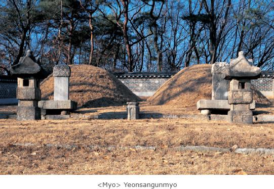 <Myo> Yeonsangunmyo