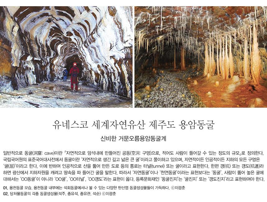 일반적으로 동굴(洞窟: cave)이란 『자연적으로 암석내에 만들어진 공동(空洞: 구멍)으로, 적어도 사람이 들어갈 수 있는 정도의 규모』로 정의한다. 국립국어원의 표준국어대사전에서 동굴이란 '자연적으로 생긴 깊고 넓은 큰 굴'이라고 풀이하고 있으며, 자연적이든 인공적이든 지하의 모든 구멍은 '굴(屈)'이라고 한다. 이에 반하여 인공적으로 산을 뚫어 만든 도로 등의 통로는 터널(tunnel) 또는 굴이라고 표현한다. 한편 갱(坑) 또는 갱도(坑道)라 하면 광산에서 지하자원을 캐려고 땅속을 파 들어간 굴을 말한다. 따라서 '자연동굴'이나 '천연동굴'이라는 표현보다는 '동굴', 사람이 뚫어 놓은 굴에 대해서는 'OO동굴'이 아니라 'OO굴', 'OO터널', 'OO갱도'라는 표현이 옳다. 등록문화재인 '동굴진지'는 '굴진지' 또는 '갱도진지'라고 표현하여야 한다. 01. 용천동굴 모습. 용천동굴 내부에는 석회동굴에서나 볼 수 있는 다양한 탄산염 동굴생성물들이 가득하다. ⓒ이광춘 02. 당처물동굴의 각종 동굴생성물(석주, 종유석, 종유관, 석순) ⓒ이광춘