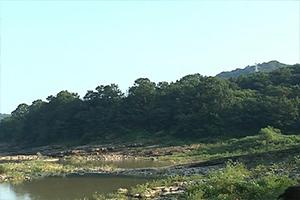 진주 유수리 백악기 화석 산지