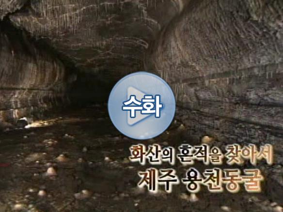 제주 용천동굴
