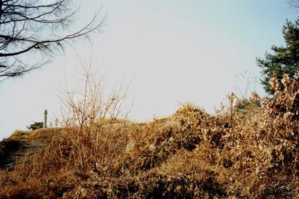 청주 것대산 봉수지 원경