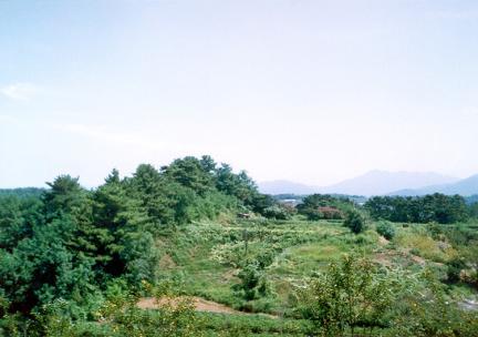 선진리성북측전경