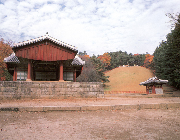 General view of royal tomb Gwangneung