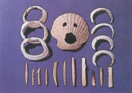 출토유물(조가비팔찌,조가비면,뼈작살)