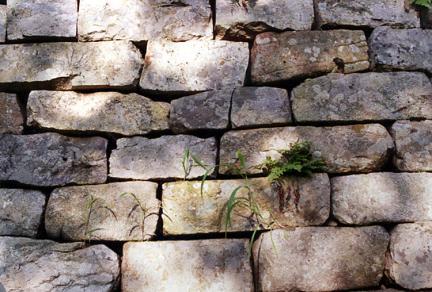 충주장미산성성벽모습