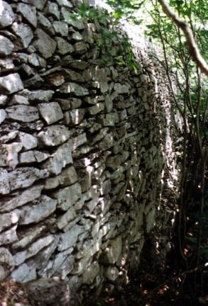 장성입암산성(성벽)