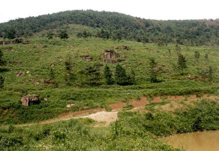 화순효산리지석묘군(채석장원경)