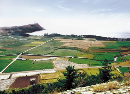 제주 고산리 유적 원경