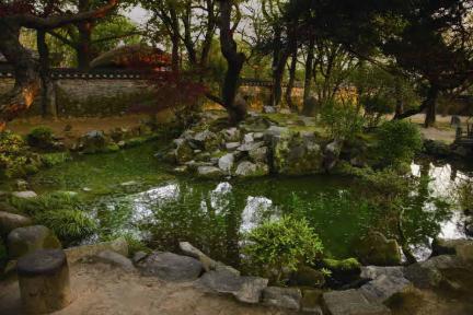 사랑마당 정원의 연못