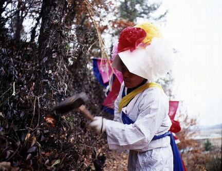 받침대를 제작하기 위해 나무를 베는모습