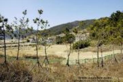 현재 부산경남경마공원내 위치