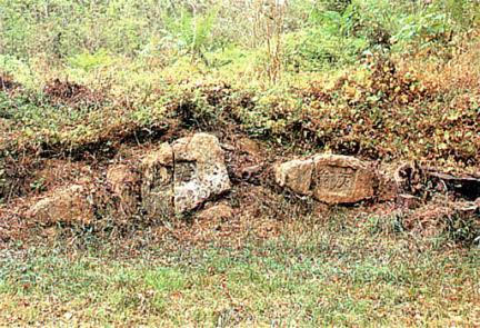 고송정초석