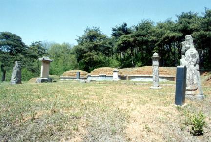 화성홍법리남양홍씨묘역전경