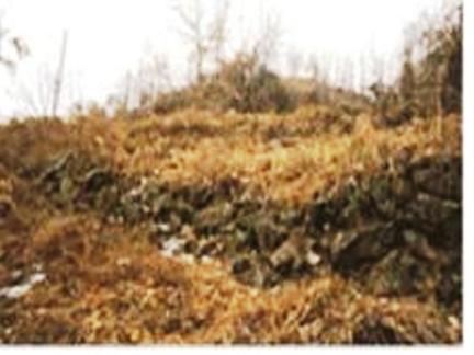고모리 산성은 북으로 철원, 포천일대와 남으로 한강일대를 연결하는 통로를 장악하기 편리한 비득재에 쌓은 고대의 군사상 요충지