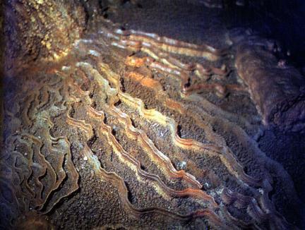영월연하동굴내부