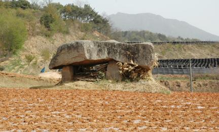 산수리지석묘(1기)