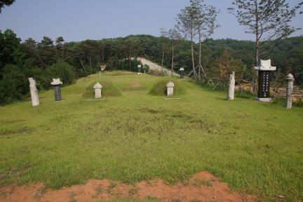 월성박씨 종중 묘역