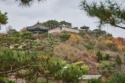 시도기념물 93호_제천 청풍망월산성_산성전경