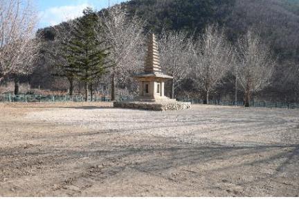 경주 정혜사지 십삼층석탑(근경, 2012. 1월)