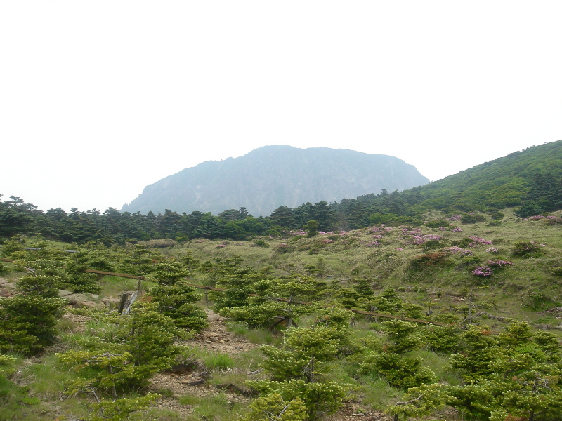 Hallasan Mountain Natural Reserve