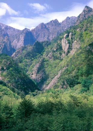 설악산천연보호구역