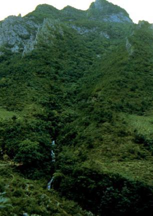 삼척대이리동굴지대(환선굴)