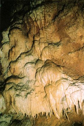 종유벽면의유석
