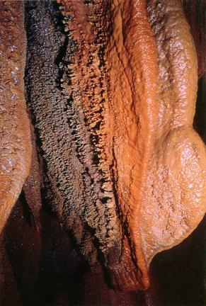 방추형종유석과동굴산호