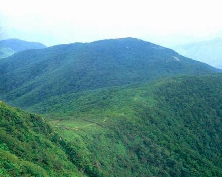 향로봉,건봉산천연보호구역