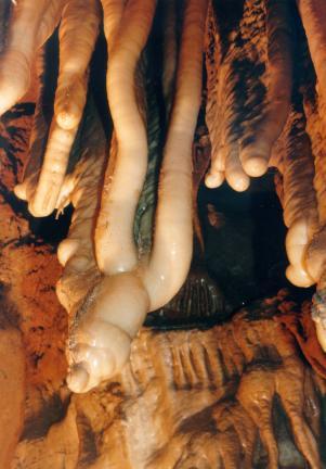 단양고수동굴