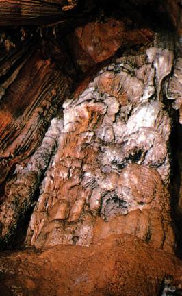 천호동굴의종유벽(수정궁)
