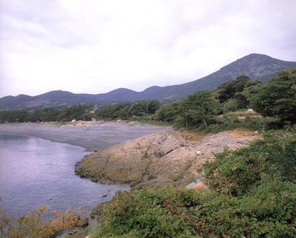 완도미라리의상록수림