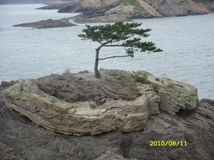 신안 작은대섬 응회암과 화산성구조