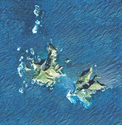 독도(위성사진)