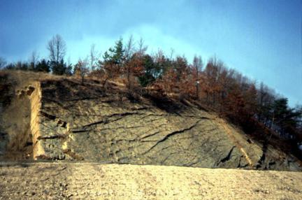 의성제오리의공룡발자국화석지