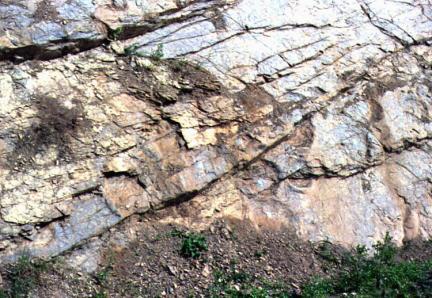 의성제오리의공룡발자국화석