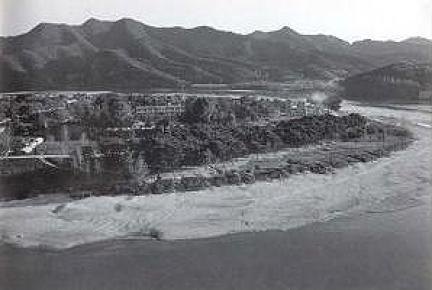 안동하회마을만송정숲(1970년대)