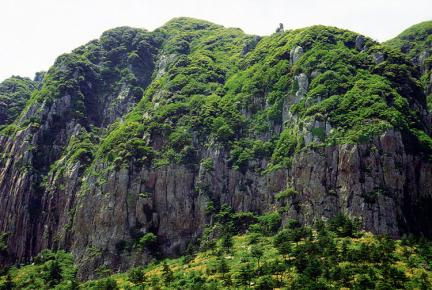 신방산암벽식물지대
