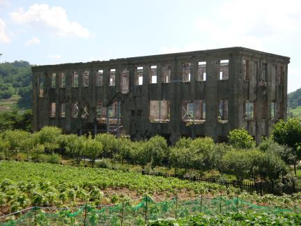 건물 배면(2009년 7월, 문화재청)