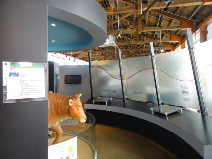 광주교육대학교 교육박물관: 2층 전시장
