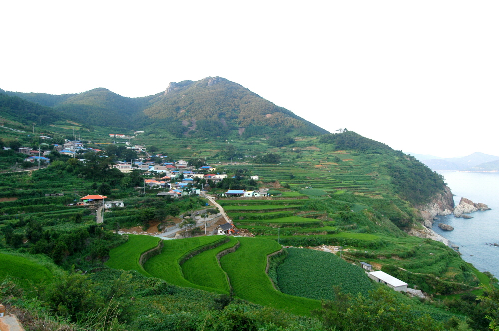 Terraced Rice Fields of Gacheon Village, Namhae