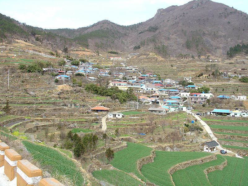 Terraced Paddy Fields of Gacheon Village, Namhae