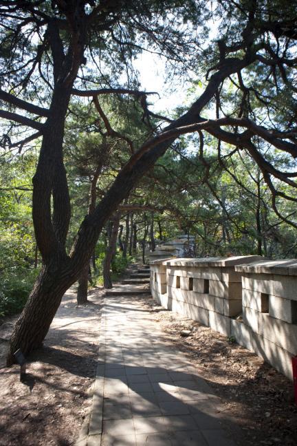 백악산 서울 성곽길