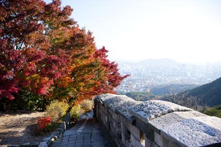 백악산 서울 성곽길 가을(곡성에서 바라본 서울시전경)