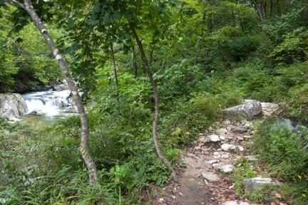 대관령 옛길과 계곡