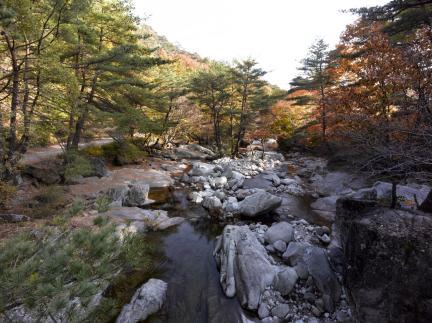 용추폭포 상류에서본 용추계곡전경