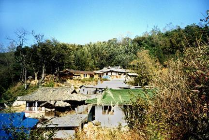 김종우가옥(원경)