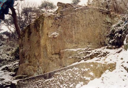천안성불사마애석가삼존16나한상및불입상전경